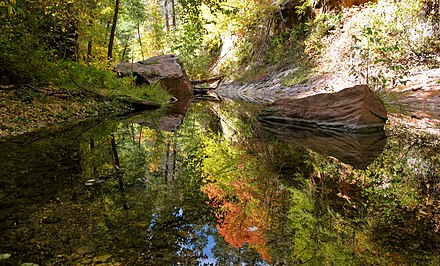 Oak Creek above Sedona West Fork of Oak Creek, reflections.jpg