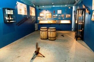 Húsavík Whale Museum - Interior of the Whale Museum