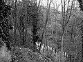 Wiśniowa 2.jpg