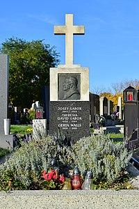 Wiener Zentralfriedhof - Gruppe 15 E - Josef Labor - 1.jpg