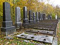 Wiener Zentralfriedhof - Gruppen 41B und 41F - Herbst 2017 (1).jpg