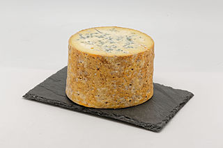 Fourme de Montbrison French cheese