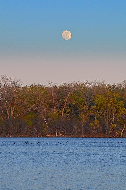 Moon Over Lake Wingra >> File Wingra Moonrise Jpg Wikimedia Commons