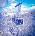 Winter tram 2.jpg