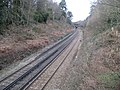 Witley, Railway line to Milford - geograph.org.uk - 705436.jpg