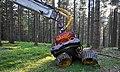 Woody 50 Harvester Prozessor.jpg