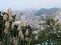 Xianjiyan 仙跡岩 - panoramio.jpg