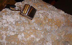 Prospecting - Rich specimen from a 2009 gold discovery by a prospector in southeastern Yukon Territory. The gold, deposited along a fracture, appears rusty-orange in this photo.
