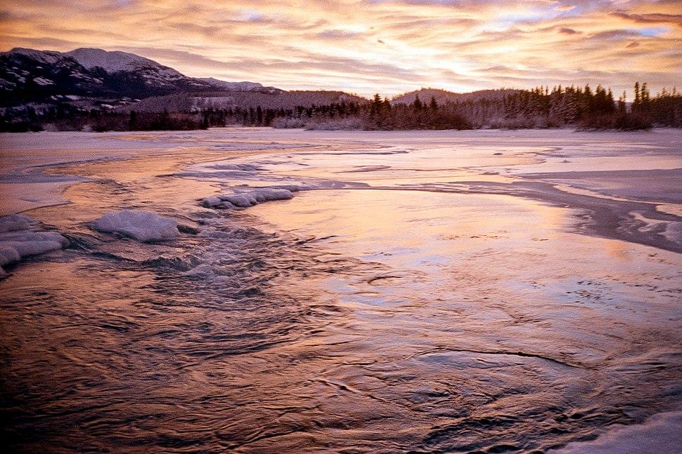 Yukon River, Whitehorse (16209595096)