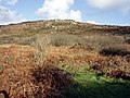 Zennor hill above the Foage valley - geograph.org.uk - 87668.jpg