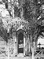 Zware holle boom met inwendig kapel , Bestanddeelnr 193-0552.jpg