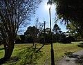 (1)Abbotsholme Glen.jpg