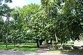 Будинок колишньої Чернігівської жіночої гімназії, 02.JPG