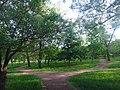 Дендрологический парк3 Волгодонск.JPG