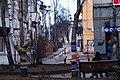 Дерева-метросексуали в центрі Луцька - panoramio.jpg