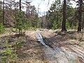 Дорога с г. Сугомак на г. Егоза - panoramio.jpg