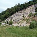 Обнажение известняков франского яруса верхнего девона - panoramio.jpg