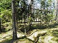 Окопы - panoramio.jpg