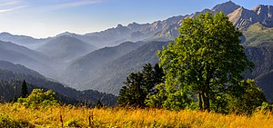 Caucasus Mountains - Aishkho Pass, Caucasus Nature Reserve