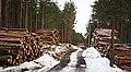 Саулкрасты (Латвия) Здесь был сосновый лес... - panoramio.jpg