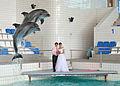 Свадьба в дельфинарии.jpg