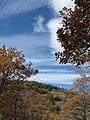 Արզականի և Մեղրաձորի արգելավայր-220.jpg