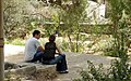 הגינה הקהילתית בחצר מוזיאון הטבע - Flickr - RonAlmog.jpg