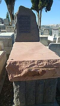 קבר פרופסור צבי הרמן שפירה.jpg