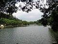 厦大水库(情人谷) - panoramio (7).jpg