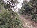 天长岭 - panoramio (1).jpg