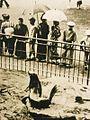 昭和3年(1928年)のオットセイ池.jpg