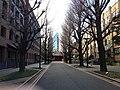 東京大学本郷キャンパス - panoramio.jpg