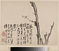 清 李方膺 墨梅圖 冊-Album of Blossoming Plum MET DP211120.jpg