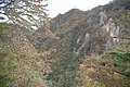 華厳の滝周辺 - panoramio.jpg