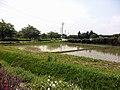 蓼沼公園 2011年5月 (駐車場から) - panoramio.jpg