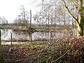 -2021-01-18 Fishing Lake next to Weaver's Way footpath, East Ruston, Norfolk (1).jpg