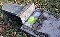 02015 0732 Der umgestürzte Grabstein auf dem alten Jüdischen Friedhof nach dem Dziady-Fest 2015 (Fest der Todten) in Bielsko.JPG
