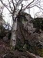 053 05 Harakovce, Slovakia - panoramio (1).jpg