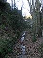 065 Torrent de la Budellera, vora el pantà de Vallvidrera.jpg