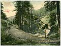 07153-Mt. Tamalpais-1906-nearly a complete circle on Mt. Tamalpais Railway-Brück & Sohn Kunstverlag.jpg