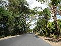 09376jfBinalonan San Manuel Pangasinan Barangays Roads Landmarksfvf 09.JPG