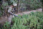 1-7 disrupts Taliban insurgents to assist retrograde operations 140821-M-OM885-005.jpg