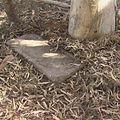 11274 Kos Jewish Cemetery.jpg