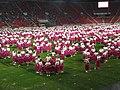 15. sokolský slet na stadionu Eden v roce 2012 (49).JPG