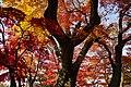 171103 Morioka Castle Morioka Iwate pref Japan05n.jpg