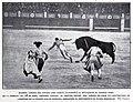 1907-05-04, Blanco y Negro, Madrid, Cogida del espada José García (Algabeño), Irigoyen.jpg