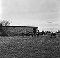 1966 Domaine expérimentale de La Sapinière à Bourges-40-cliche Jean-Joseph Weber.jpg