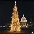 1986 U.S. Capitol Christmas Tree (31805189105).jpg