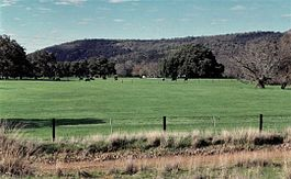 Wongong Farm with the darling range and Wongong Gorge in background. (1994)