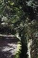 2012-10-27 12-17-20 Pentax JH (49283270103).jpg